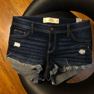 NEW Hollister Low Rise Shorts